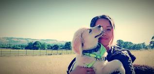 puppy-first-walk-in-park