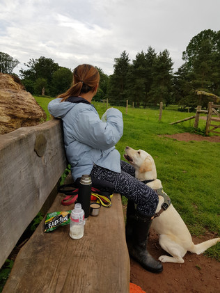 dog-playpark-near-me-fleet-and-camberley