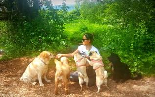 dog-sitter-and-dog-walker-hampshire