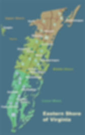 CC - Eastern Shore Map.jpg