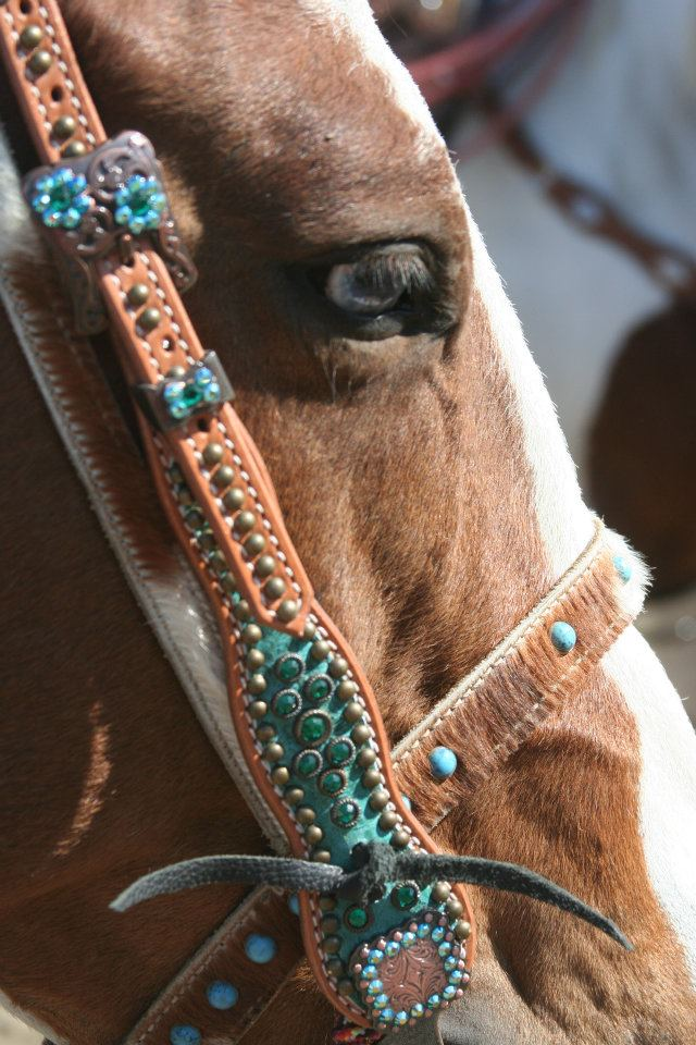Fancy Halter