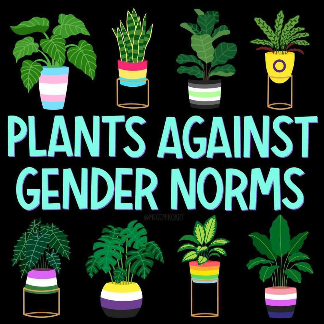 Plants against gender norms