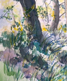 Tree Trunks - Watercolour