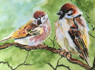 Two Kingfishers - Watercolour