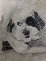 Zoe - Watercolour