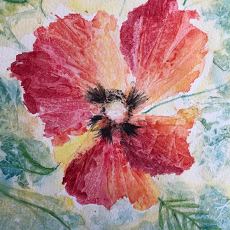 Poppy - watercolour