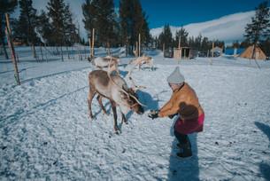 Lapland(6)-79.jpg