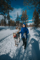 Lapland(6)-144.jpg