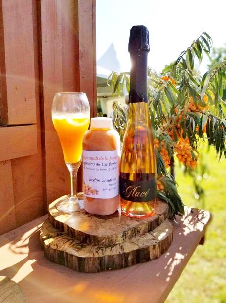 Cocktail Cidre Glacé et Argousier pur