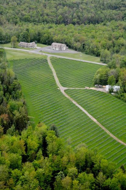 Vue ariale plantation