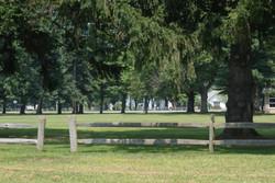 Stanton Park field