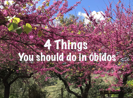Dahungrycouple explores Óbidos : 4 Things You Should Do   游葡萄牙中世纪小镇Óbidos  4大必做事项