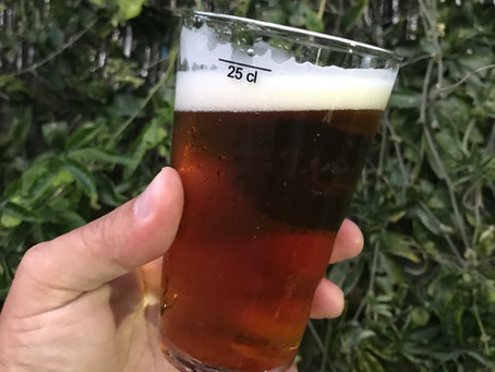 In Focus: Portugal's Craft Beer Scene
