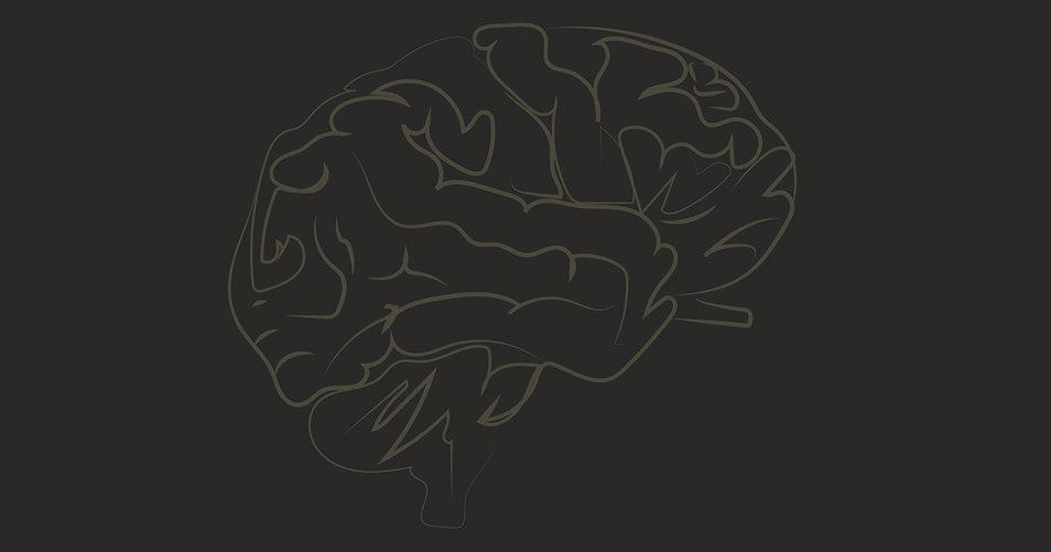 MOC_background_Brain.jpg