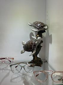 Turtle Missoni.jpeg