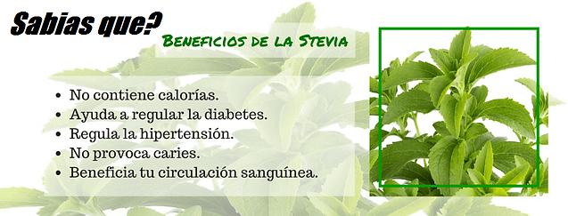 Stevia, el azucar verde