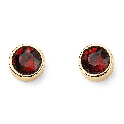 Gold Plated Crystal Birthstone Earrings