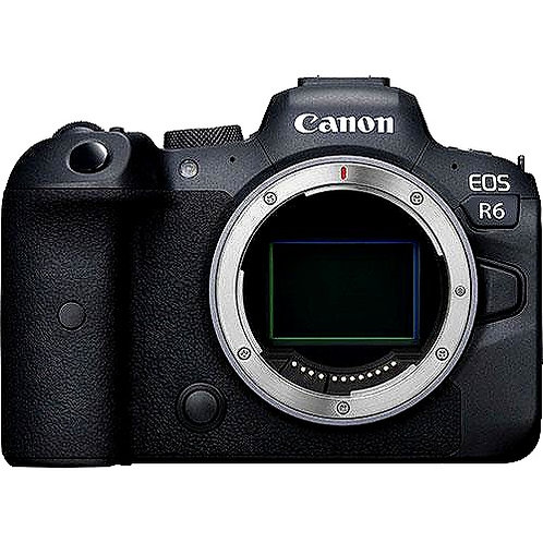 CRYPTOR GLOBAL ™️©️ Canon EOS R6 PRO Mirrorless Digital Camera