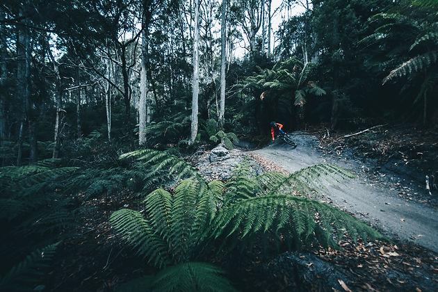 Tasmania - Australia's Mountain Bike Heaven