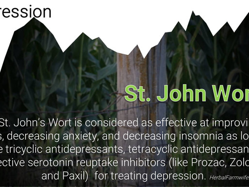 St. John's Wort Is An Effective Option for Depression