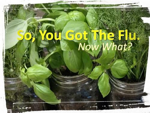 So You Got The Flu Now What? HerbalFarmwife