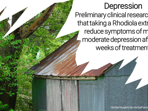 Reduce Depression Symptoms With Rhodiola
