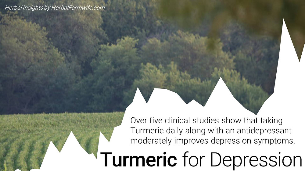 Turmeric For Depression HerbalFarmwife.com