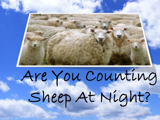 How Many Sheep Are You Counting At Night?