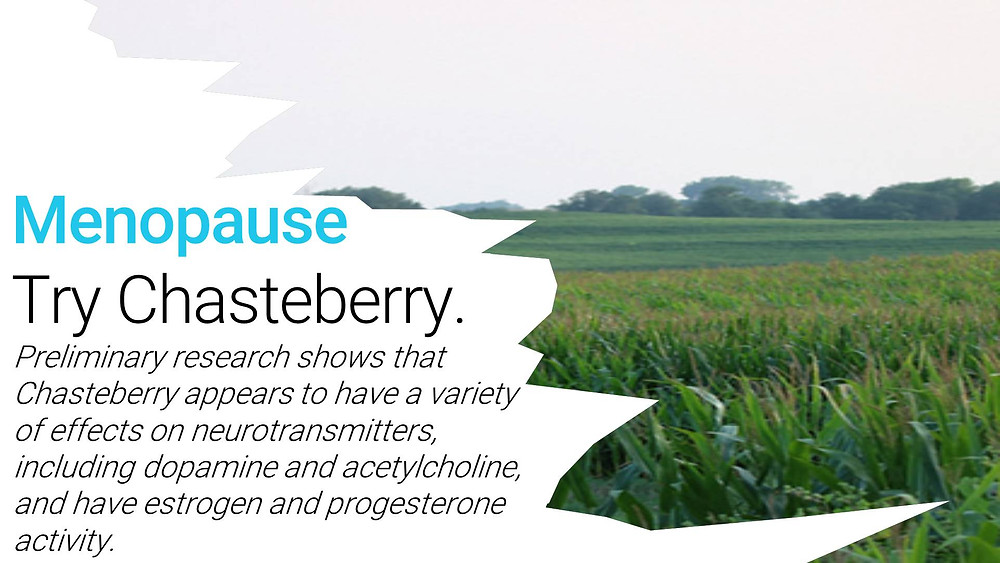 Menopause. Try Chasteberry By HerbalFarmwife.com