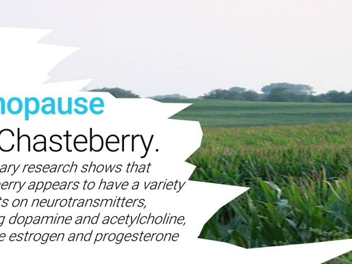 Menopause? Try Chasteberry.