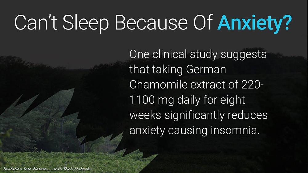 Can't Sleep Because of Anxiety? HerbalFarmwife.com