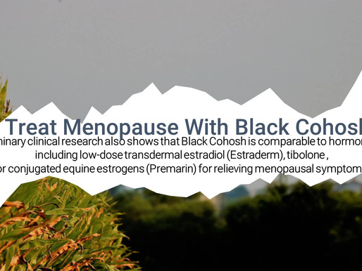 Treating Menopause With Black Cohosh