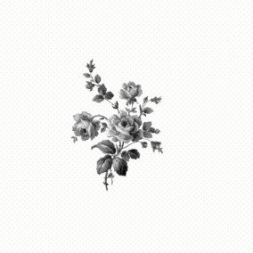 Belle Rose Flowers and Plants Black & White