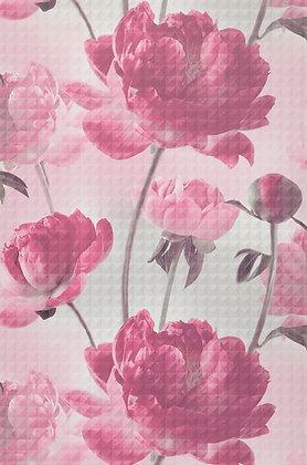 Aurelie Pink & White