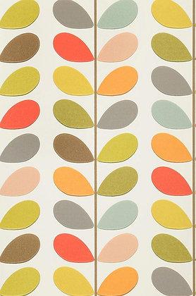 Osiris Multicolor 1