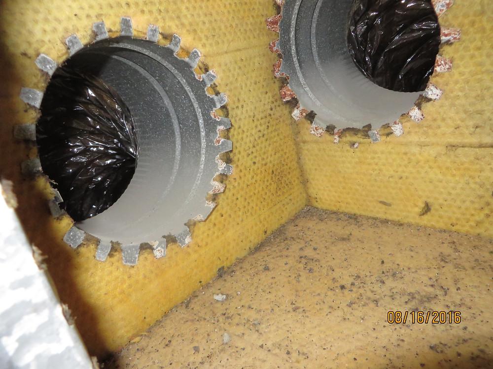 Mold inside a supply plenum