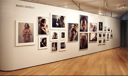 phot exhib.png