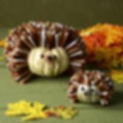 hedgehog_pumpkin.1507236111.jpg