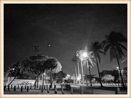 Miami B/W photo Pandemic Landscape