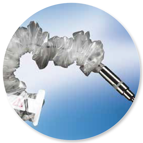 Sistema de túnel de injerto de vena