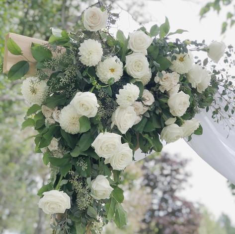 Dahlia rose white arbor.JPG