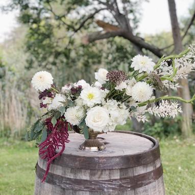 White burgundy barrel flowers