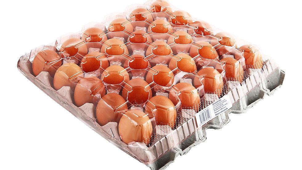 Egg 30s