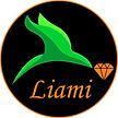 Liami Logo Black.jpg