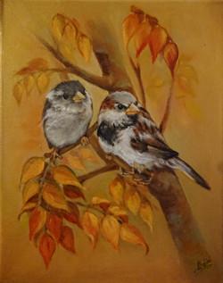 Sparrows in Foliage