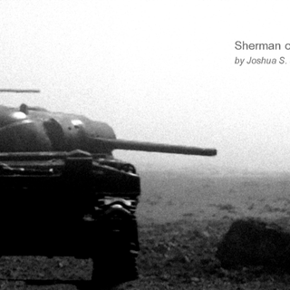 Sherman on the Beach 1