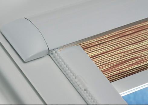 System5.jpg
