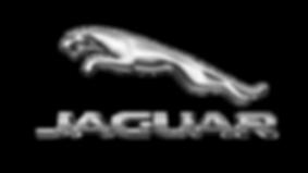LogoUfficialeJaguar.png