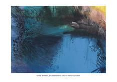 River Wandle, Wilderness Island L cmyk.j