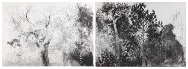 Lost in the wilderness- Oaks Park A2 double page Charcoal